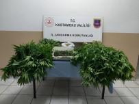 Uyuşturucu İle Yakalanan Şahıs Tutuklandı