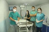 Yapışık Dördüz Kedi Yavrularına Cerrahi Operasyon