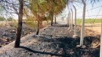 Sigara İzmariti Binlerce Dönümlük Araziyi Yakacaktı