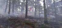 Amasya'da Korkutan Orman Yangını