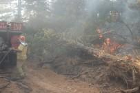 Yenice Orman Yangınına Ağır İş Makineleriyle Müdahale Ediliyor
