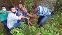 Düzce'de Tarım Aracı Dere Yatağına Devrildi Açıklaması 3 Yaralı