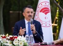 Bakan Pakdemirli Açıklaması 'Kırsalda 12 Milyar Liralık Yatırım, 66 Bin Yeni İstihdam Oluşturduk'