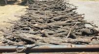 Odun Hırsızlarını Güvenlik Korucuları Yakaladı