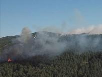İSTANBUL VALİLİĞİ - Aydos yangını kontrol altında!