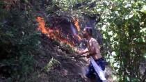 Düzce'de 15 Dönüm Fındık Bahçesi İle 10 Dönüm Ormanlık Alan Yandı