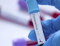 BAKAN YARDIMCISI - Türkiye'den corona virüs aşı hamlesi!