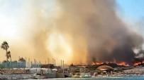 İZMIR VALILIĞI - Bakan Pakdemirli'den İzmir'deki yangın ile ilgili flaş açıklamalar! Yangın kasıtlı mı çıkarıldı?