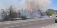 Lastiği Patlayan Kamyon Orman Yangını Çıkardı