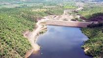Manisa'da Barajların Hayat Verdiği Topraklarda Hasat Heyecanı