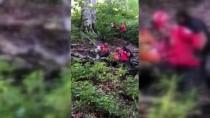 Cezaevi Firarisinin Cesedi Gürcistan Sınırındaki Ormanlık Alanda Bulundu