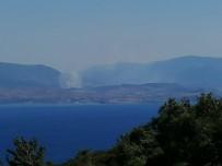 Midilli Adası'nda Korkutan Yangın