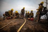 NEVADA - ABD'de söndürülemeyen orman yangınları nedeniyle olağanüstü hal ilan edildi