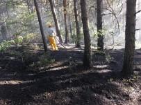 Daday'da Çıkan Orman Yangını Büyümeden Söndürüldü