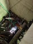Artvin'de Asansör Boşluğuna Düşen İnek Kurtarıldı