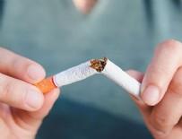 TıP FAKÜLTESI - İşte yılda sigara kaynaklı ölüm sayısı!