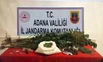 Adana'da 8 Kilo Kubar Esrar Ele Geçirildi