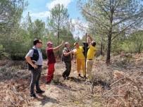 Karabiga'da 'Dumansız Yangın' İle Mücadele