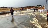 Şanlıurfa'da Yağmur Yağışı Fıstığa Zarar Verdi