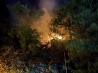 ÖLÜDENİZ - Yangın korku dolu anlar yaşattı!