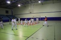 Milli Antrenör, Tatil İçin Geldiği Memleketinde Çocuklara Ücretsiz Karate Eğitimi Veriyor