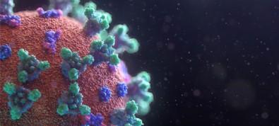 Koronavirüs vücudumuzu böyle ele geçiriyor! Bulaşmada en kritik günler...