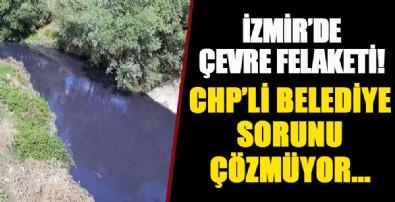 İzmir'de çevre felaketi! Vatandaş isyan etti, CHP'li belediye sorunu çözmedi