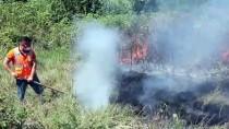 Anadolu Otoyolu Kenarındaki Çalılık Yangını Trafiği Aksattı