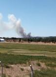 Çanakkale Ayvacık'ta Orman Yangını
