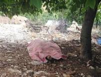 SAĞANAK YAĞIŞ - Muğla'da korkunç olay: Ağacın altına sığınmıştı...!!!