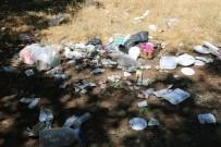 Tunceli'deki Vadilerde Temizlik Çalışması