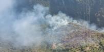 HELIKOPTER - Hatay'da orman yangını çıktı!