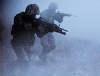 PIYADE - Hakkari'de 2 terörist etkisiz hale getirildi
