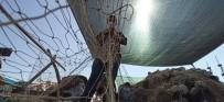 Karadenizli Balıkçılar 'Vira Bismillah' Demeye Hazırlanıyor