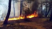 GÜNCELLEME 2- İstanbul'da Aydos Ormanı'nda Yangın