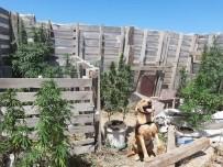 Biga'da Uyuşturucu Operasyonu Açıklaması 1 Gözaltı