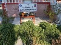 Manisa'da Jandarmadan Drone İle Uyuşturucu Operasyonu