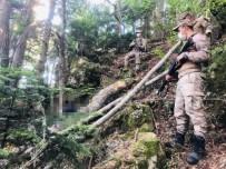 14 Gündür Kayıp Olan Yaşlı Adamın Cesedi Ormanlık Alanda Bulundu