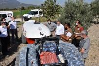 Manisa'da Zeytin Sineği İle Mücadelede Yeni Yöntem