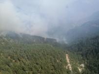Pozantı'daki Yangın Kontrollü Olarak Devam Ediyor
