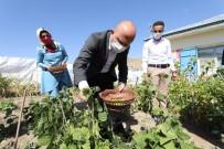 Ağrı Valisi Dr. Osman Varol, Dağlıca Köyü İlköğretim Okulu'nu Ziyaret Etti, Öğrencilere Hediye Verdi