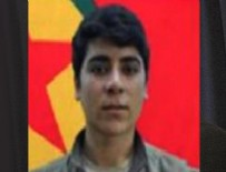 AĞIRLAŞTIRILMIŞ MÜEBBET HAPİS - 500 bin lira ödülle aranan PKK'nın sözde komutanı yakalandı