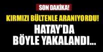 KARA KUVVETLERİ - Kırmızı bültenle aranan terör örgütü DEAŞ mensubu Hatay sınırında yakalandı