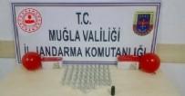JANDARMA - Jandarma'dan uyuşturucu operasyonu: 5 gözaltı