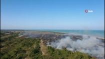 GÜNCELLEME - Kızılırmak Deltası Kuş Cenneti'nde Yangın