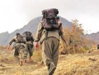ALI HAYDAR - PKK'nın sözde üst düzey görevlisi öldürüldü!