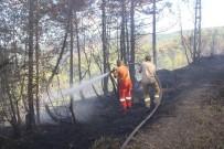 İnebolu'da Aynı Gün Çıkan 2 Ayrı Yangın Korkuttu