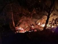 Artvin'in Yusufeli İlçesinde Yangın