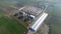Genel Müdür Aslay, 'Atıksu Arıtma Tesislerine 295 Milyon TL Yatırım Yaptık'