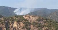 Mihalgazi'deki Orman Yangını İçin Ankara'dan Helikopter Geliyor